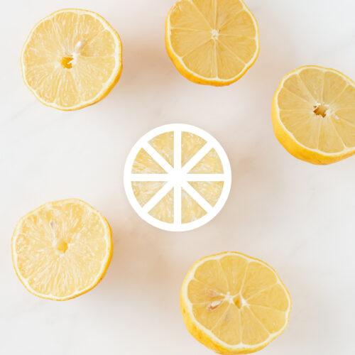 Logo icône citron