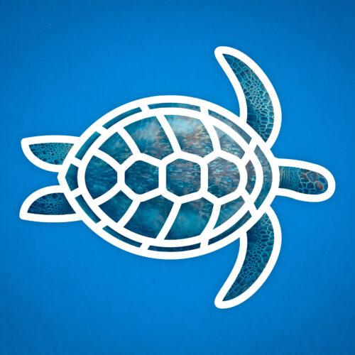 Logo icône tortue